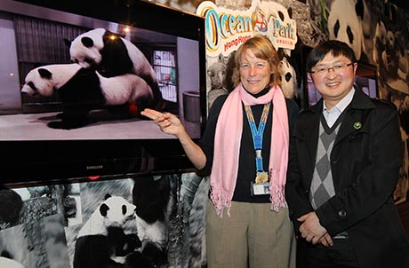 Photo 7: Ms. Suzanne Gendron, Executive Director, Zoological Operations and Education with Dr. Wang Chengdong, Director of Veterinary Service of the China Conservation and Research Centre for the Giant Panda in Wolong