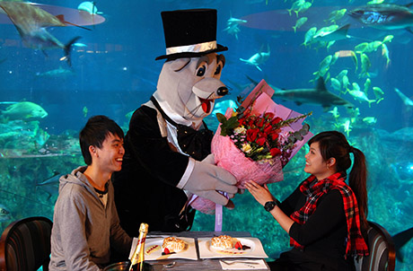 Caption: Spoil your special one with an unforgettable experience in Ocean Park for $1,688.