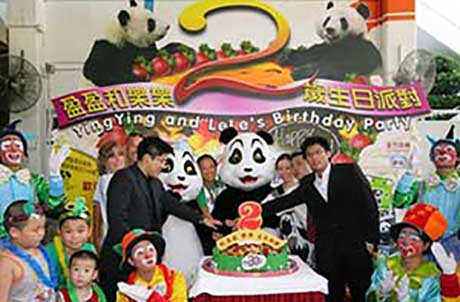 Ocean Park celebrates the second birthday for Ying Ying and Le Le.