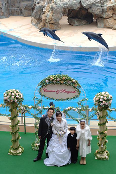 在威威狮令的见证下,骆璟华先生和黄嘉敏小姐在浪漫迷人的海洋剧场举行海洋公园的首个婚礼