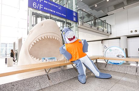 Photo 3 and 4: The exhibition features two giant synthetic shark-shaped sand sculptures and educational panels conveying messages of shark conservation.