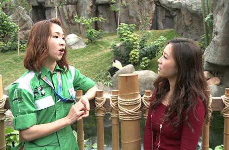 圖一:大熊貓訓練員Elke分享和大熊貓的相處之道