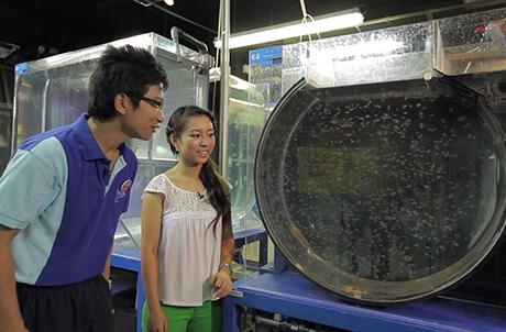 圖四:水族員阿田向主持Donna講解飼養水母的學問