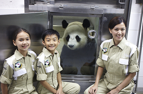 Honorary Panda Keeper