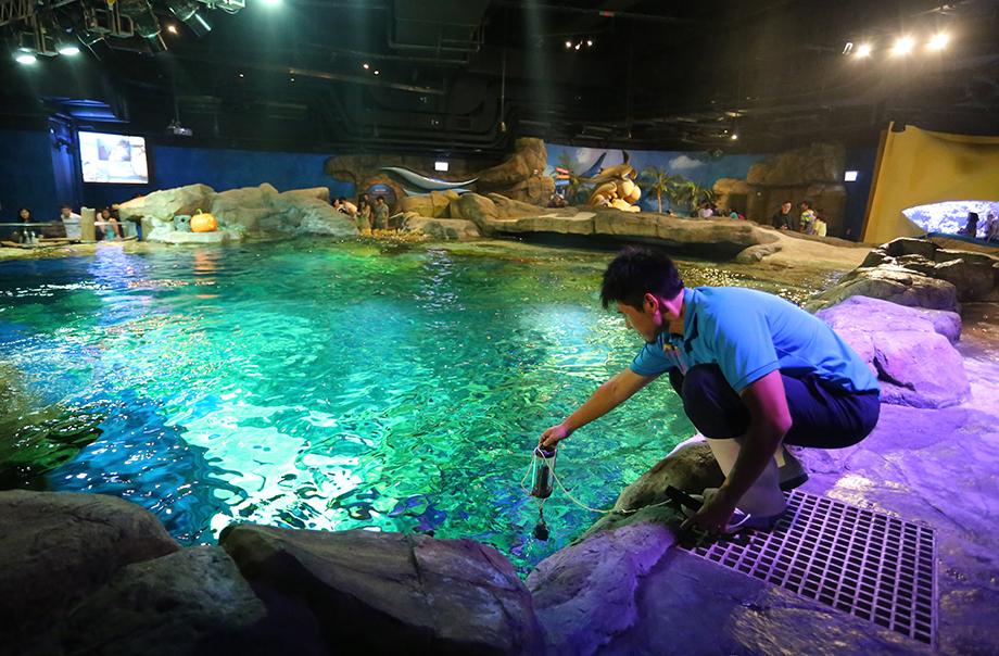 從海洋奇觀抽取海水樣本