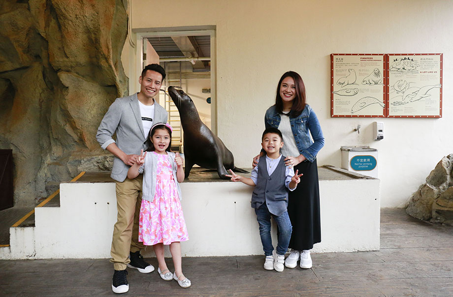 Meet the Sea Lion | Ocean Park Hong Kong