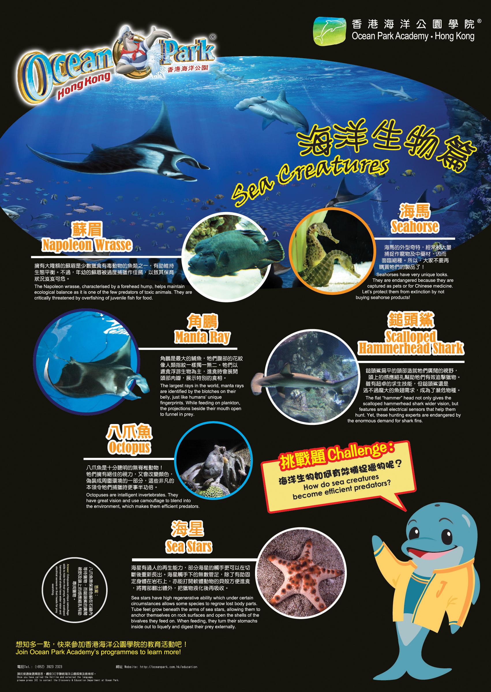 Educational Posters Ocean Park Hong Kong