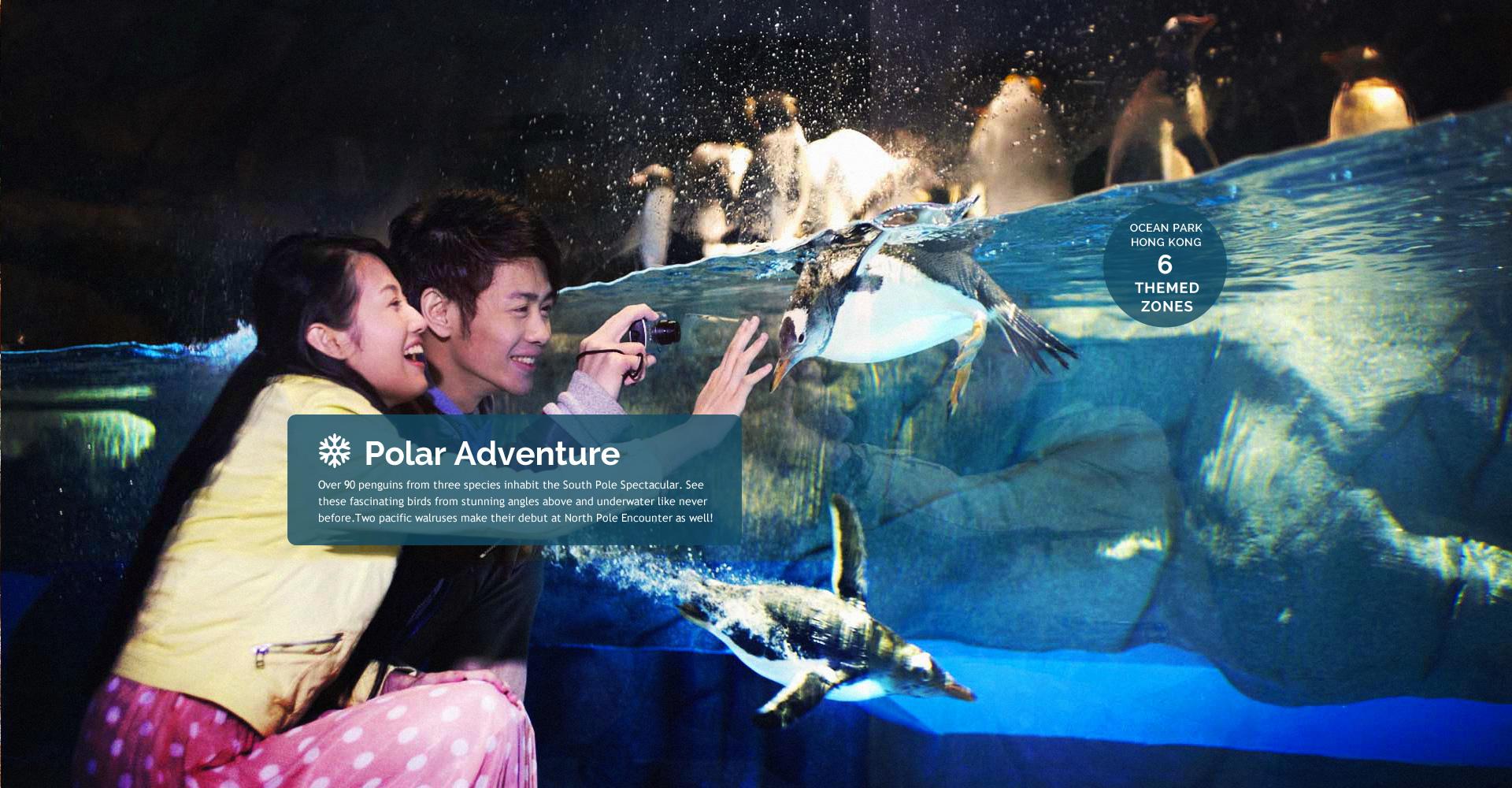 https://media.oceanpark.com.hk/files/s3fs-public/Philippine_inside_banner01_desktop_Polar_1.jpg