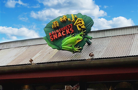 Rainforest Snacks