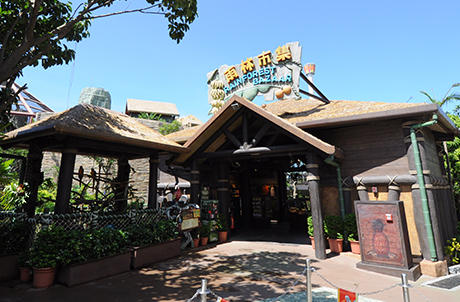 Rainforest Bazaar