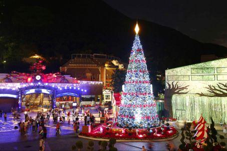 甜蜜放閃聖誕樹