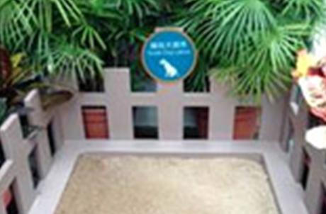 辅助犬厕所