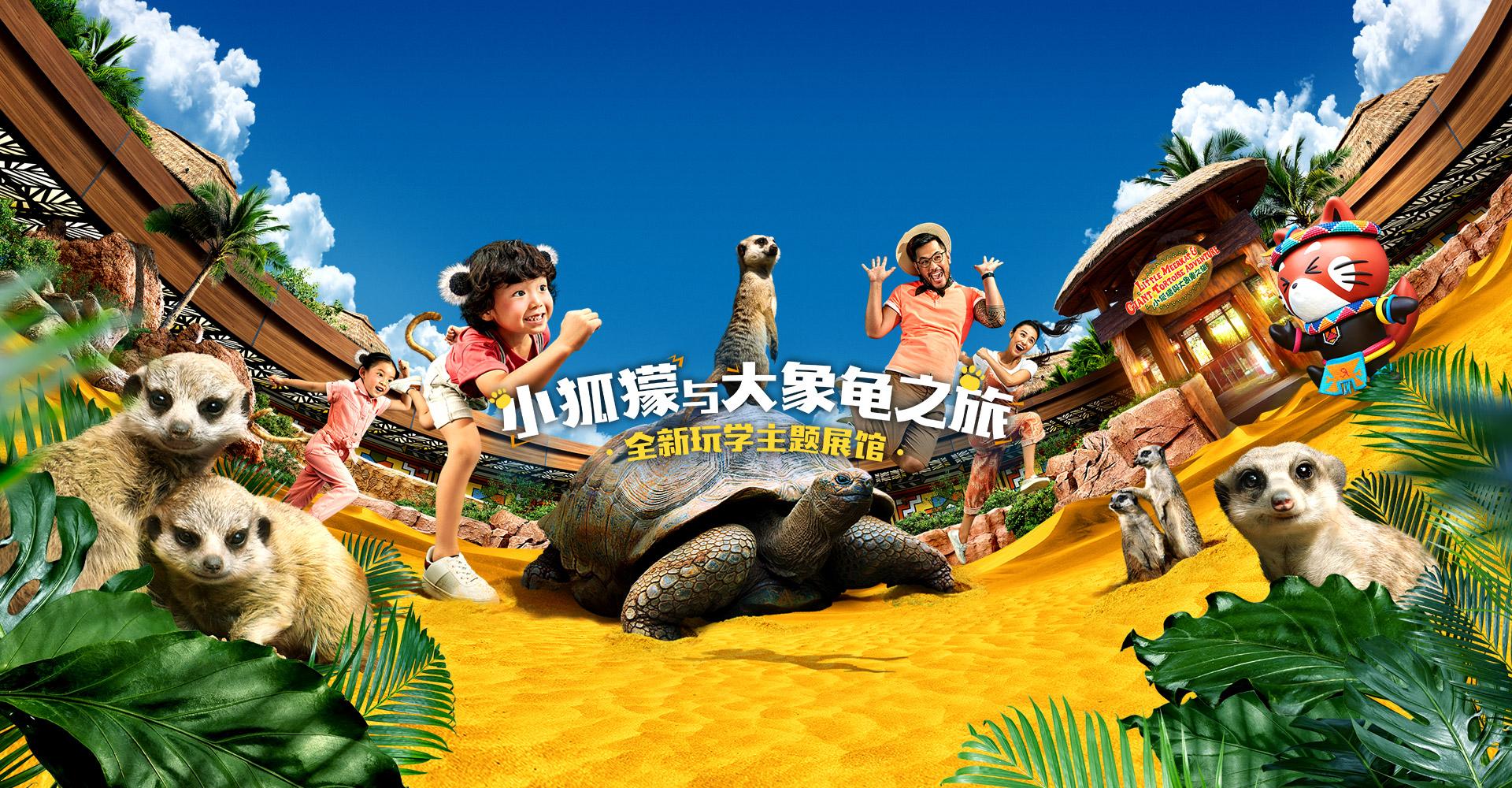 小狐獴与大象龟之旅