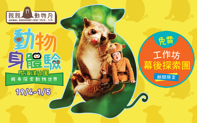animal-discovery-fest-2019