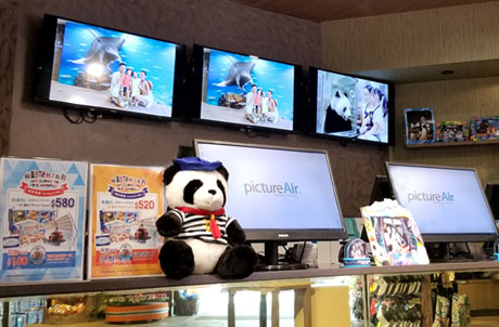 Panda Kingdom Image Gallery