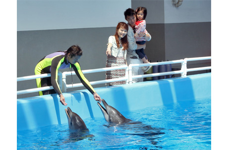 Meet Our Dolphin Care Takers