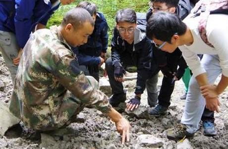 Wuyishan Internship Programme